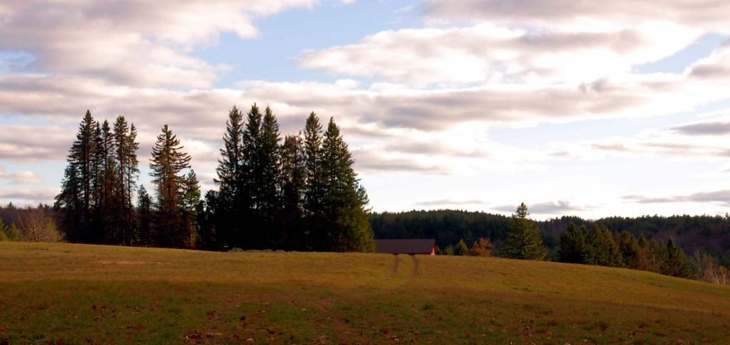 paige hill farm